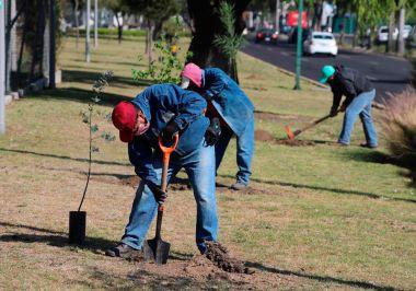 Compromiso de los ODS en Metepec, Edo. De Mex.