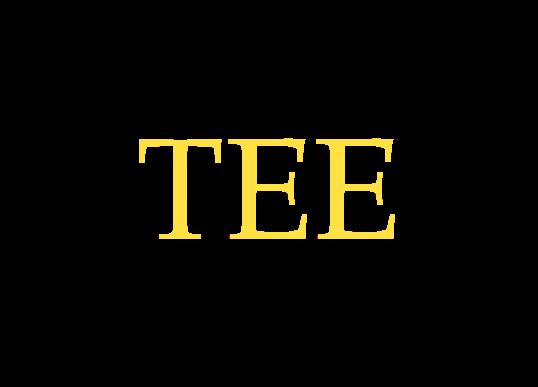 Transformadores Energéticamente Eficientes (TEE)