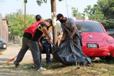 Poda y retiro de árboles peligrosos en San Pedro, Tlaquepaque