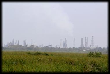 Acciones para los Gases de Efecto Invernadero en Ciudad Madero, Tamps.