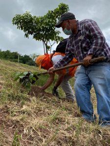 Ejecución de plan de acción de cambio climático en Distrito Central [Tegucigalpa], Honduras