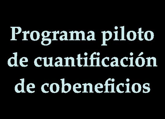 Programa piloto de cuantificación de cobeneficios sociales, económicos y ambientales de la energía sustentable